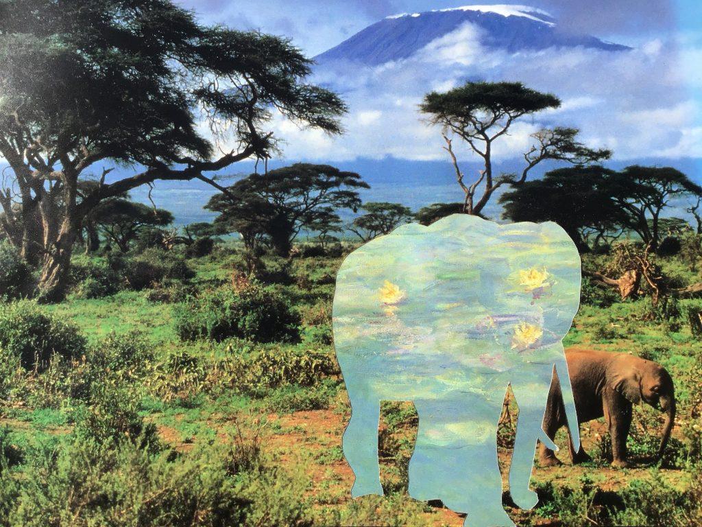 Lily the Elephant NFT